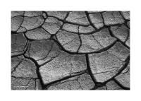 Cracked Earth, Death Valley, California 141
