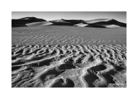 Great Sand Dunes, Colorado 84