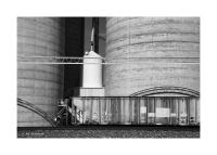 Railroad Car & Grain Elevator, Gurley, Nebraska 195