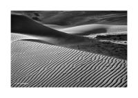 Great Sand Dunes, Colorado 159