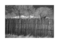 Fence, Fort Garland. Colorado 351